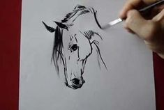 Draw Horses Horse head - how to draw by Tora - Video Lessons of Drawing Horse Head Drawing, Horse Drawings, Animal Drawings, Art Drawings, Horse Sketch, Watercolor Horse, Equine Art, Horse Art, Art Techniques