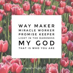 Way maker🙌🏻 Miracle worker 💫Promise keeper👊🏻Light in the darkness💡My God💞That is who you are🎚  Even when I don't see it, you're workin'🔥 Even when I don't feel it, you're workin'🔥 You never stop, you never stop workin'🔥 You never stop, Jesus you are... Way maker, miracle worker Promise keeper, light in the darkness My God, that is who you are. -🎶Leeland🎶 🤗Keep believing and keep trusting in G The Miracle Worker, Promise Keepers, Jesus Paid It All, Lord Of Hosts, Biblical Inspiration, Biblical Quotes, Love My Family, Daily Prayer, Believe In God