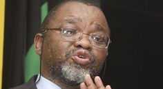 ANC's NWC to give updates on Limpopo, NW, EC, FS