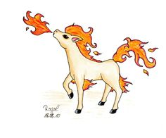 #Ponyta #Pokemon