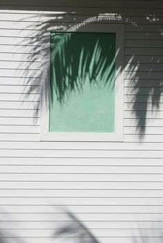 palm, pastel, color, green, shadow, beach houses, mint, shade, beach shack