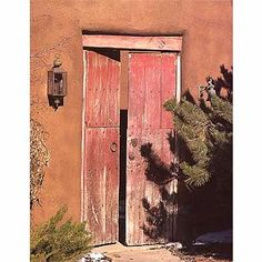 Mexican Style doors-- altho this doesn't look like any doors that I'm familiar w/ in Mexico...