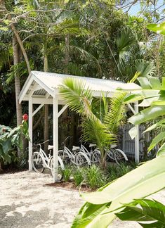"""See our website for additional relevant information on """"greenhouse ideas layout"""". It is actually an outstanding spot for more information. Byron Bay Accommodation, Byron Bay Beach, Greenhouse Plans, Seasons Of The Year, Exotic Fruit, Photosynthesis, Decoration Design, Green Plants, Outdoor Gardens"""