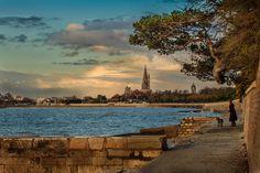 Seaside dog walk.  La Rochelle, France