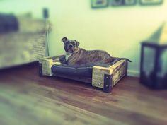Hondenmand / bak Steigerhouten balken