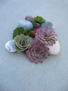 succulent felt plants soft rock sculpture by miasole on Etsy