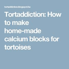 Tortaddiction: How to make home-made calcium blocks for tortoises
