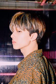 park jisung nct dream quiet down reload teaser photoshoot Nct 127, Ntc Dream, Park Jisung Nct, Nct Dream Members, Johnny Seo, Park Ji Sung, Na Jaemin, Entertainment, Jaehyun