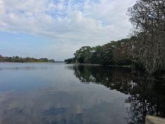 Salmons Bay, Anderson Park, Tarpon Springs, Florida