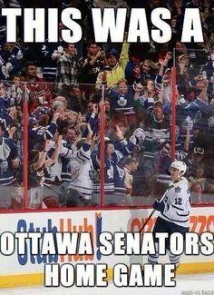 Leafs Nation, you're crazy. Go Leafs. Hockey Games, Hockey Mom, Ice Hockey, Hockey Stuff, Bruins Hockey, Hockey Goalie, Funny Hockey Memes, Hockey Quotes, Funny Memes