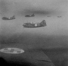 Brewster Buffalos of Finnish airforce