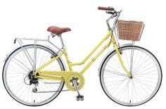 Vintage Womens Bicycle