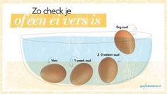 Met dit trucje zie je meteen of een ei nog goed is   PlusOnline