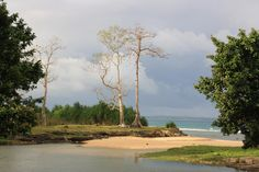 Little Andaman Island (North Andaman Island, India) - Top Tips Before You Go - TripAdvisor Andaman And Nicobar Islands, Trip Advisor, Country Roads, India, River, Plants, Outdoor, Google Search, Tips