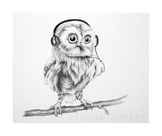 Little Musical Owl Pencil Drawing Nursery by IleanaHunter on Etsy