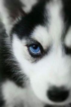 Stunning eyes!