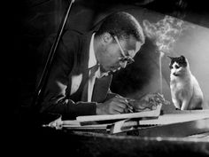 Thelonious Monk, his piano, and his cat:  -JYT's team