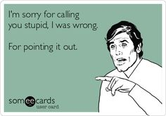 13 I'm sorry for calling you stupid, I was wrong. For pointing it out.