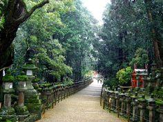 japanese sceneries | ... Flowersentence Photographs And Desktop Wallpaper Of Japanese Scenery