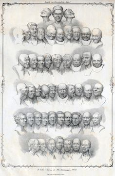 Face and bust Studies