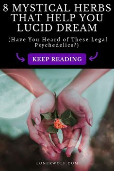 Our dreams reveal our deepest secrets, cravings and opportunities for healing. These 8 legal psychedelics will help you to make use of them. Find out how to use them . Magic Herbs, Herbal Magic, Healing Herbs, Natural Healing, Lucid Dreaming Tips, Legal Psychedelics, Astral Projection, Psychic Abilities, Mind Body Soul