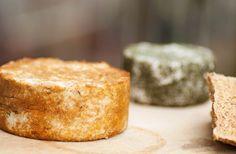 Raw cheese recipe: Almond Ricotta Cheese with Paprika - organictalks.com
