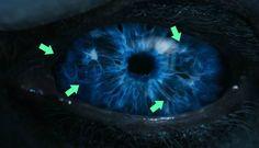 Yonomeaburro: Juego de tronos: ¿esconde el trailer de la séptima...