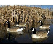 Avery Oversized Series Black Duck Full Body Decoys