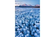 Frozen bubbles of methane trapped beneath Alberta's Lake Abraham are beautiful, but dangerous if popped