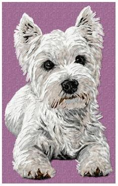 Stock of embroidery designs West Highland White, West Highland Terrier, White Terrier, Westies, Dog Design, Cat Breeds, Machine Embroidery Designs, Animals And Pets