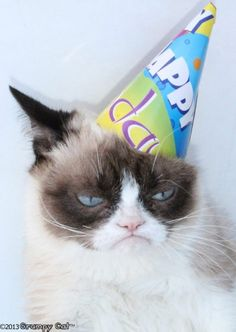 67 ideas for funny happy birthday pictures humor hilarious grumpy cat Cat Birthday Memes, Grumpy Cat Birthday, Funny Happy Birthday Wishes, Funny Happy Birthday Pictures, Funny Birthday, Unhappy Birthday, Birthday Cake, Belated Birthday, Birthday Board
