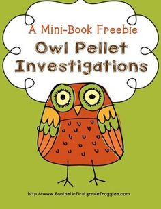 Owl Pellet Investigations Freebie - love this!