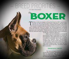 Перевод статьи в The Canine Chronicle об изучении подхода экспертов к оценке породы немецкий боксер