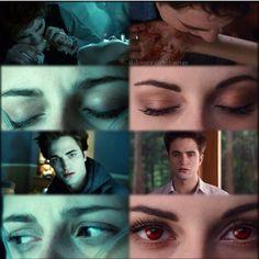 The Twilight Saga Twilight Saga Quotes, Twilight Saga Series, Twilight Edward, Edward Bella, Twilight New Moon, Twilight Series, Twilight Movie, Edward Cullen, Bella Cullen