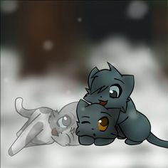 Les chatons - La Guerre des Clans