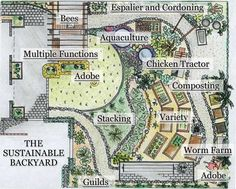 Permaculture Build Your Sustainable and Edible Garden with the