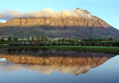"""Cyclists are reflected in water during Stage 3 of the 2016 ABSA Cape Epic mountain bike race near Wellington, South Africa. The race is often described as the """"Tour de France"""" of mountain biking and will see 1,200 riders racing over 400 miles in eight stages. Kim Ludbrook/EPA"""