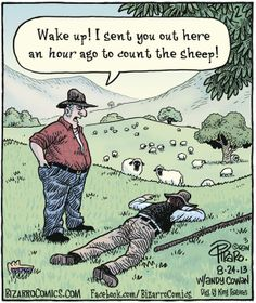 count sheep   zzzzz. Bizarro by Dan Piraro. August 24, 2013