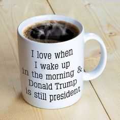 I hate when I wake up in the morning and Donald Trump is still president Trump Is My President, Vote Trump, Pro Trump, Vice President, Trump Train, Conservative Politics, Conservative Quotes, Wake Me Up, Mug Designs