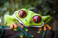 Cool rain forest frog, smiley artwork.    :)