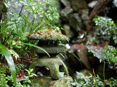 明治の森箕面 音羽山荘 庭園2画像2-1
