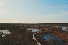 #Latvia #Swamp