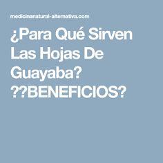 ¿Para Qué Sirven Las Hojas De Guayaba? →【BENEFICIOS】