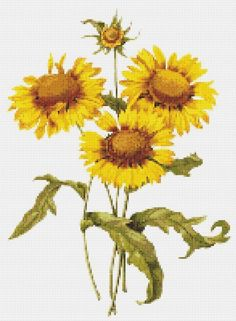 Sunflower Cross Stitch Pattern by Blue Morning Expressions