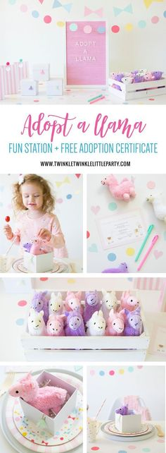 Throw an adorable 'Adopt a Llama' themed Birthday Party