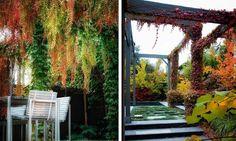 Backyard-Holidays-Outdoor-Design-3