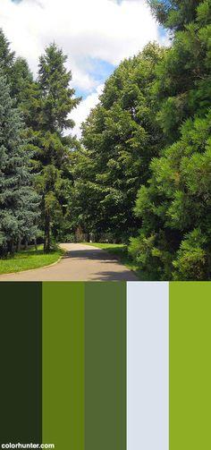 Dscn0073 Color Scheme from colorhunter.com