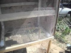 Set Up For Breeding, Keeping and Raising Quail by Freedoms Garden - YouTube