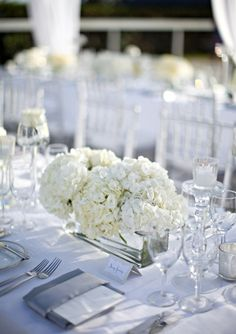 Row of hydrangeas along front of head table.  Could be varying colors.