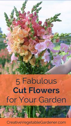 Growing these flowers will supply you with bright bouquets to spread throughout your house all season long.